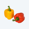 red yellow capsicum