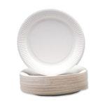 Disposable Paper Plates